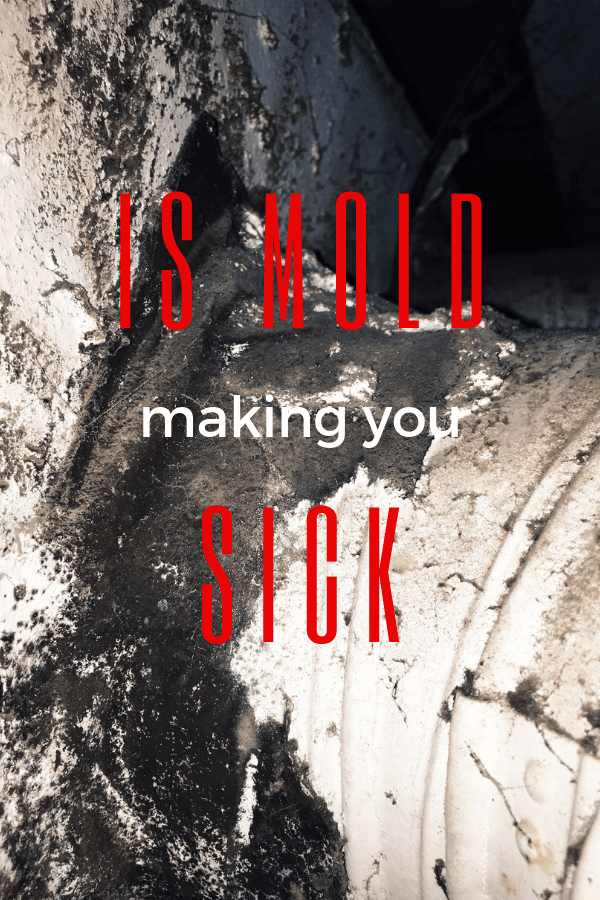 is mold making you sick learn more at Down Leah's Lane