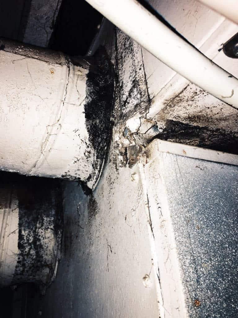mold growing on furnace caused health illness